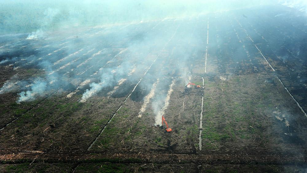 Kepulan asap terlihat dari lahan perkebunan yang dibakar, di kawasan Kecamatan Sungai Ambawang, Kabupaten Kubu Raya, Kalbar, Rabu (6/8). Dari hasil pantauan Helikopter MI-8 yang diturunkan Badan Nasional Penanggulangan Bencana (BNPB) untuk memadamkan titik api (hot spot) di Kalbar, ternyata titik api yang ada di Kabupaten Kubu Raya berasal dari pembakaran lahan perkebunan sawit milik perusahaan swasta di Sungai Ambawang. Hal tersebut menyebabkan timbulnya kabut asap tebal yang melanda Kota Pontianak dan sekitarnya. ANTARA FOTO /Jessica Helena Wuysang/ss/nz/14