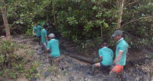 Desa Sungai Duri Manfaatkan Dana Desa Budidaya Kepiting Bakau