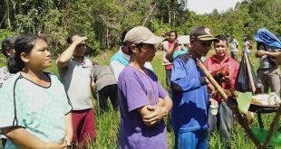Karolin ApresiasiPenyelesaian Sengketa Tanah di Desa Sekendal Dengan Cara Hukum Adat