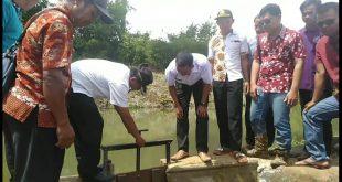 Desa Kini Dusun Kuang Landak Bangun Listrik Dengan Dana Desa